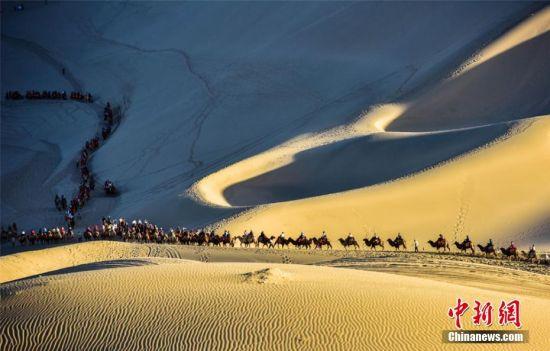 中外游客骑骆驼畅游敦煌大漠,体验丝路风情。王斌银摄