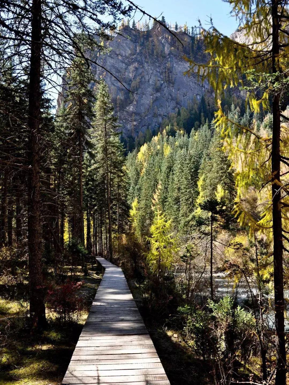 甘南卓尼深山里的仙境 大峪沟的秋韵