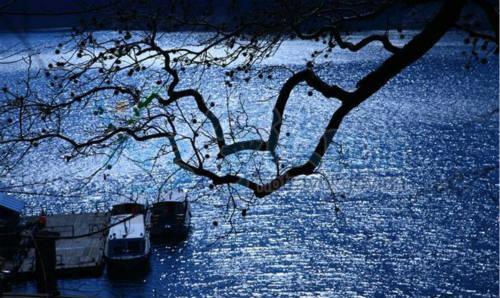 宁波旅游网;图片中心;那一汪湖水,是心中永远的乡愁!