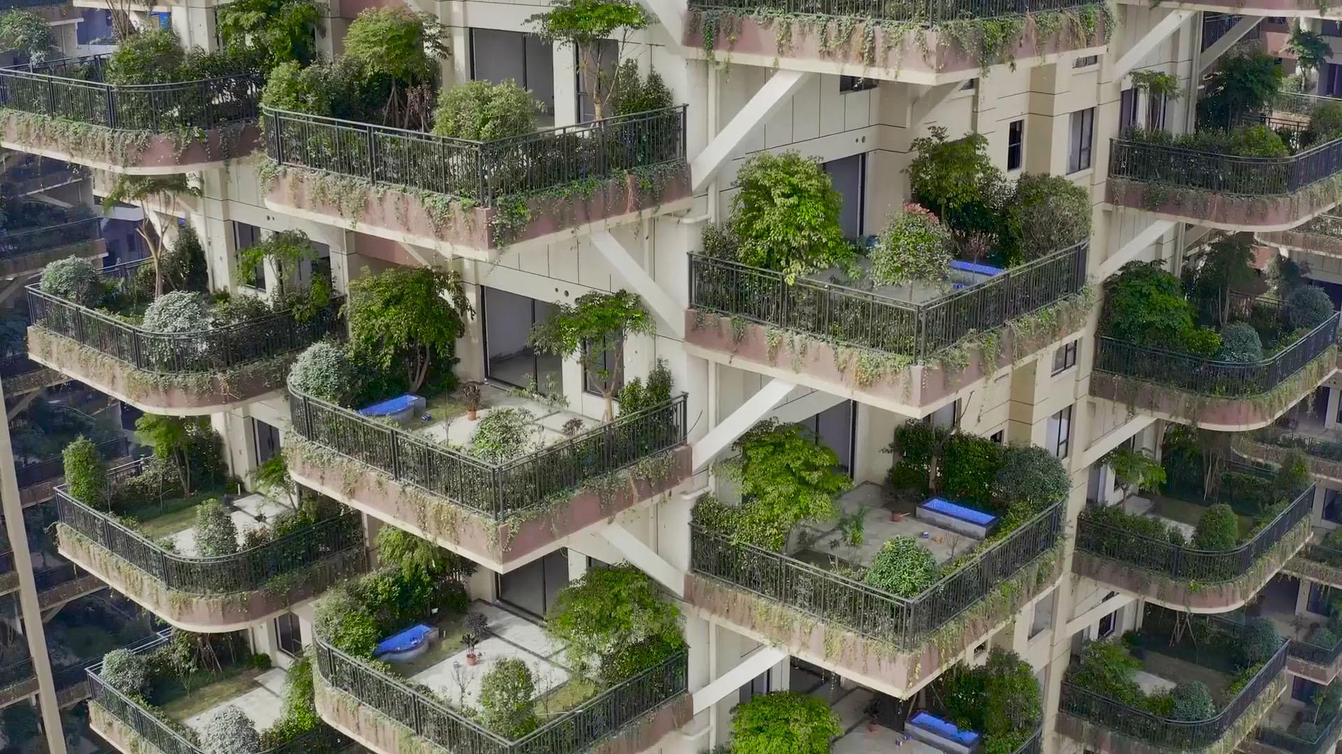 """打造成都版""""垂直森林"""" 国内首个第四代住房项目新都震撼亮相"""