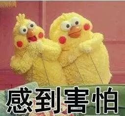 案子还没判,法官决定对它们先予执行,它们是啥?10000只活鸡!
