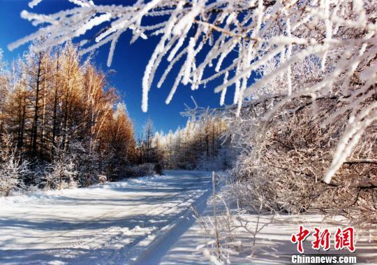 """内蒙古牙克石获评""""中国冰雪之都"""""""