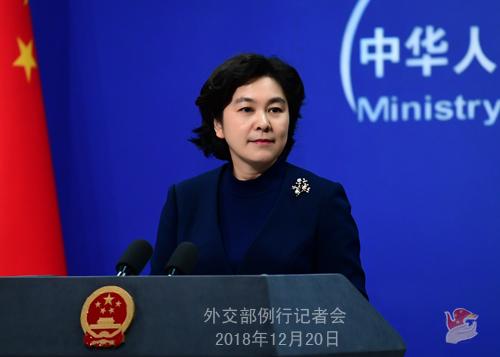12月20日,外交部发言人华春莹主持例行记者会。(图片源自外交部官网)