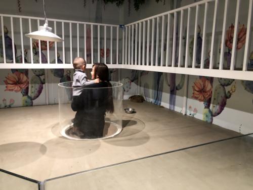 京东达夫博物动物园开业,首家室内动物园入驻吉林省