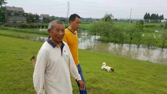 7月4日上午,芜湖县花桥镇花桥村59年入党的84岁老党员王树清坚持支持