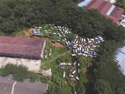 南京:近400辆车藏身荒山,想干什么?(组图)