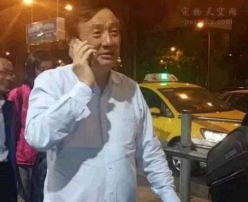 华为副总裁李玉琢离职的一篇文章让人替任正非感到悲伤