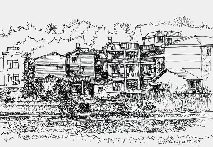 城市  老房子边上的杉树和泡桐是父亲栽的,算来也有十几年了,物是人非