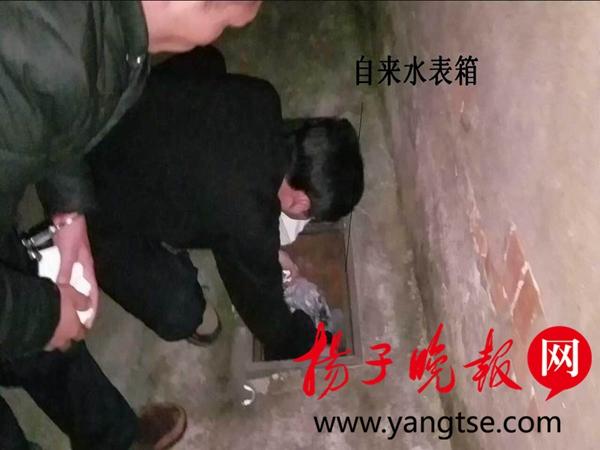民警在水表箱里起获被盗手机。
