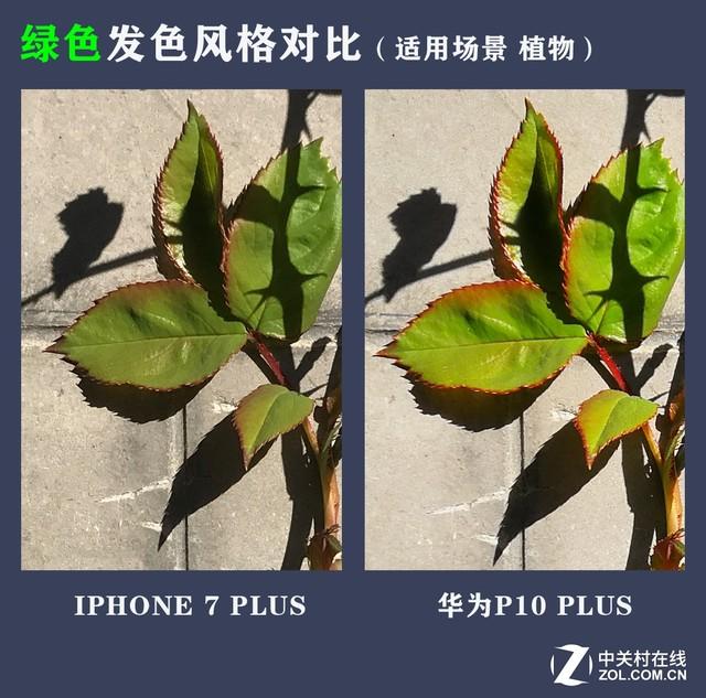 华为P10 Plus拍照把iPhone 7P越甩越远
