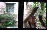 """除了小孟这样的职业播主,在南昌还有许多兼职的直播女郎。""""大家都以为,主播是很光鲜靓丽的,但在现实中我们一样要工作,要生活,要靠劳动来养活自己。""""童童是映客直播的网络主播,1994年出生的她当主播快三年了,今年刚从上海回到南昌。"""