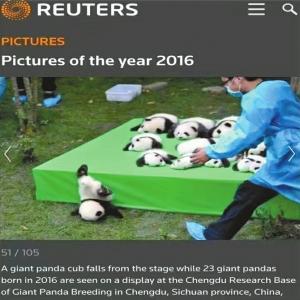 路透社2016年度图片。