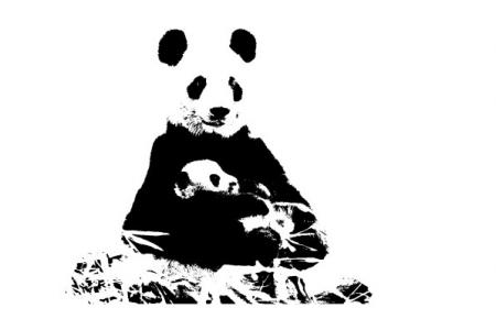 5问上海野生动物园