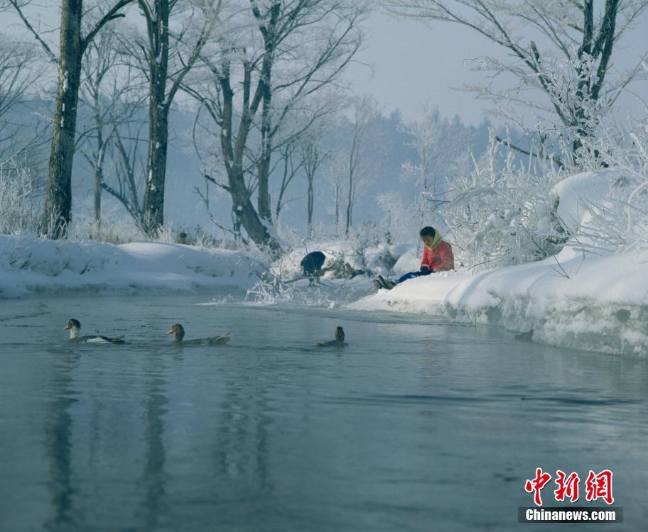 每年冬季,吉林市都会举办雾凇冰雪节,除了有各种冰雪活动,最吸引摄影发烧友的莫过于那北国特有的奇观吉林雾凇。吉林市位于吉林省省会长春市以东80公里,松花江在市区穿流而过,著名的丰满发电站使江水在严冬仍不冰封,照样川流不息。较温暖的江水在强烈温差的情况下呈现出热气蒸腾的景象,上升的水汽在遇冷后就在岸边的树枝和草丛上结霜,形成树挂,这就是吉林市独特的人工加自然环境而产生雾凇的原因。沿着江畔探索,有一个拍摄雾凇特别好的地方,那就是位于吉林市北面30公里的雾凇岛,它是松花江下游的一个天然江心岛,面积只有50公顷,