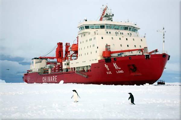 """""""雪龙""""船在南极碰撞冰山 目前人船安全"""