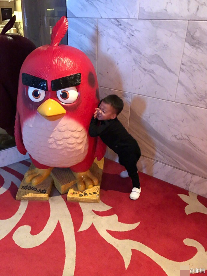 吴京老婆谢楠拒绝生二胎:没法把爱分给其他孩子