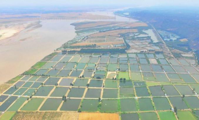 航拍黄河滩万亩渔塘