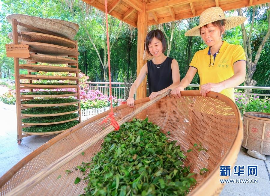 海峡茶会:茶文化体验馆开馆